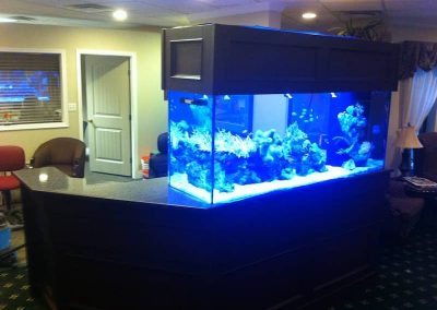 Laminate-with-aquarium-2016-10-14